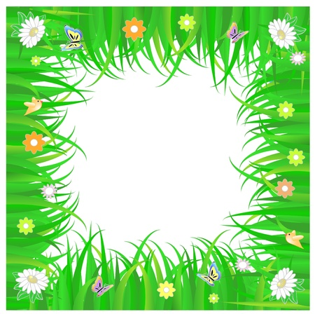 spring frame of green grass and flowers ,  with white copy space
