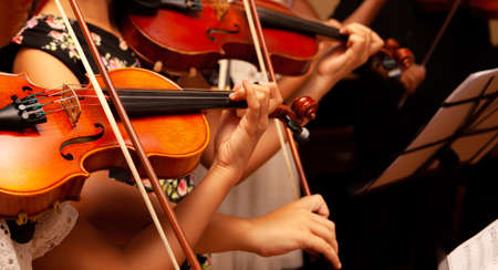 Foto de Row, group of anonymous violin players, children, people playing, bows in hands, stands in front, closeup. Classical music concert simple performance kids orchestra string section / quartet performing - Imagen libre de derechos