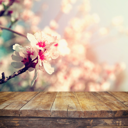 Photo pour wooden rustic table in front of spring white cherry blossoms tree. vintage filtered image. product display and picnic concept - image libre de droit