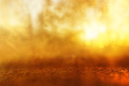 Photo for Abstract background of light burst among trees and glitter golden bokeh lights - Royalty Free Image