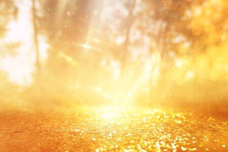 Photo pour concept background photo of light burst among trees and glitter golden bokeh sparkles - image libre de droit
