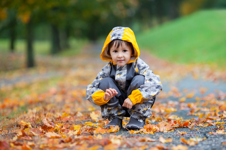 Little boy, playing in the rain in autumn park, leaves around himの写真素材