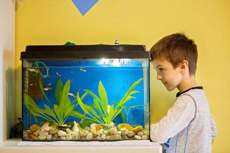 Foto de Little child, studying fishes in a fish tank, aquarium at home in kids room - Imagen libre de derechos