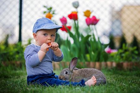 Foto de Adorable little toddler child, boy, eating carrot in a garden, little bunny sitting next to him - Imagen libre de derechos