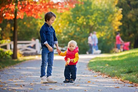 Photo for Happy little children, baby boy and his brother, laughing and playing with leaves in the autumn on the nature walk outdoors - Royalty Free Image
