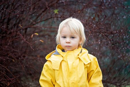 Photo pour Beautiful funny blonde toddler boy, watching rain drops on a branch of tree,  playing in the rain, wintertime - image libre de droit