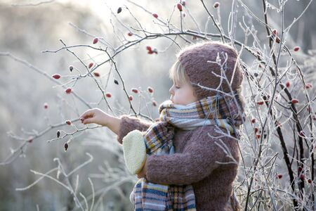 Foto de Beautiful toddler boy, dressed in knitted outfit with hat and scarf, playing in frosty morning forest with toy and cup of tea - Imagen libre de derechos
