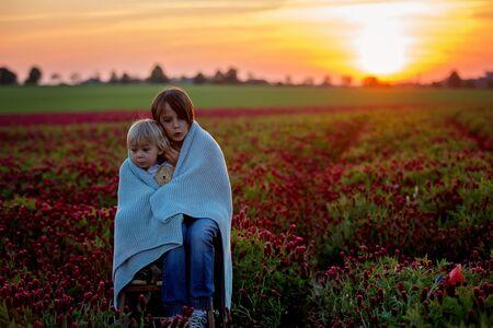Photo pour Beautiful children, brothers in gorgeous crimson clover field on sunset, springtime - image libre de droit