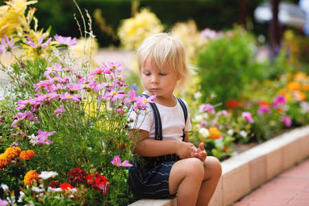 Photo for Cute toddler blond boy, sitting on sidewalk next to blooming flowers, summertime - Royalty Free Image