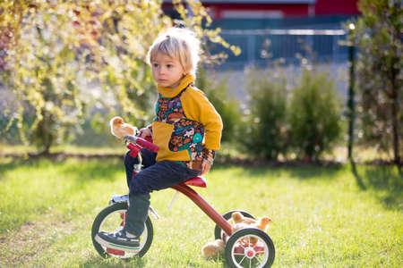Photo pour Sweet cute blond child, toddler boy, riding tricycle with little chicks in garden, playing with baby chickens - image libre de droit