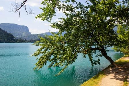 Photo pour View of famous lake Bled in Julian Alps, northwest Slovenia - image libre de droit