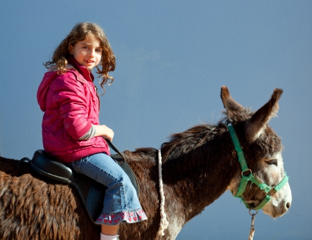 donkey mule with kid little girl riding happy smiling on blue