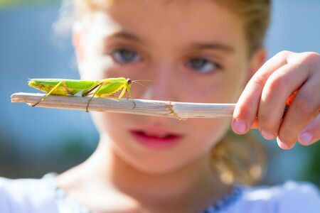 scientific naturalist biologist kid girl looking praying mantis insect closeup