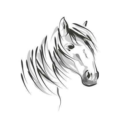 Illustration pour Vector line sketch horse head - image libre de droit