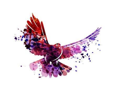 Illustration pour Vector watercolor silhouette dove - image libre de droit