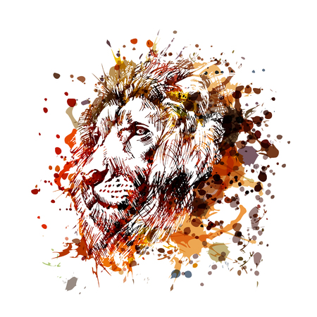 Illustration for Unique and colorful illustration of a lion head - Royalty Free Image
