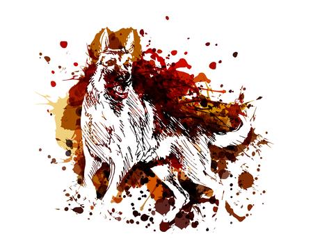 Illustration pour Vector color illustration of a German Shepherd - image libre de droit