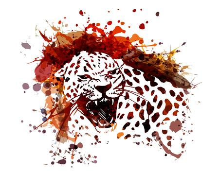 Illustration for Vector color illustration of leopard - Royalty Free Image