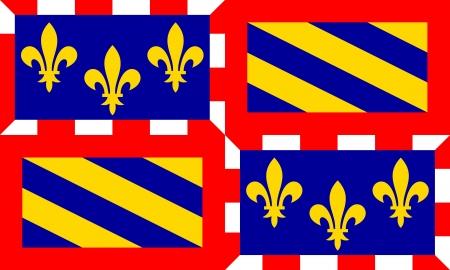 france region Bourgogne flag
