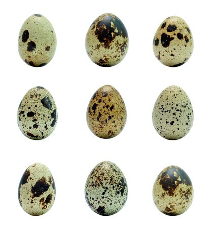 nine quail eggs collage isolated over white