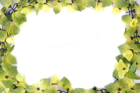 beautiful flowers frame isolated on white background