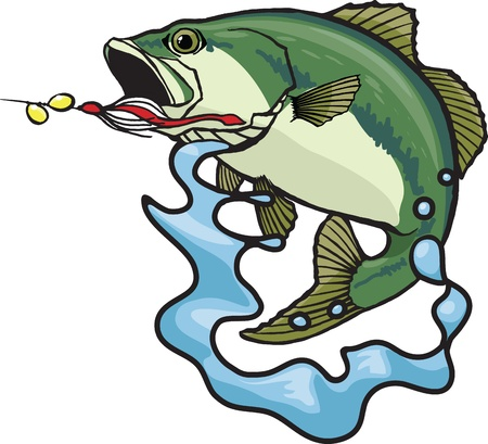 Illustrated Largemouth Bass  Vector and high resolution jpeg files available