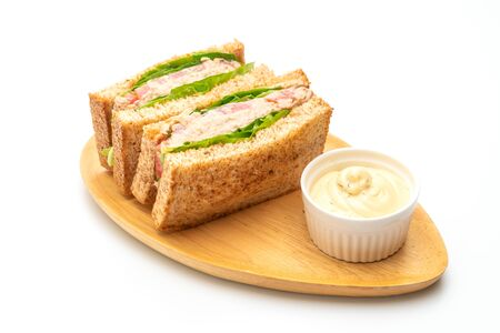Photo pour Homemade Tuna Sandwich isolated on white background - image libre de droit