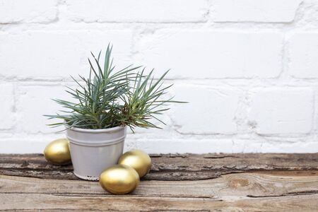 Photo pour Gold Easter eggs and ceramic grey bucket with spring grass on wooden table near white brick wall background. Copy space. Place for text - image libre de droit