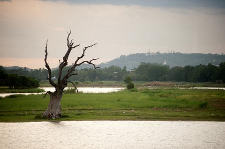 Scenic view of Taughthaman lake near U-Bein Bridge,Myanmar