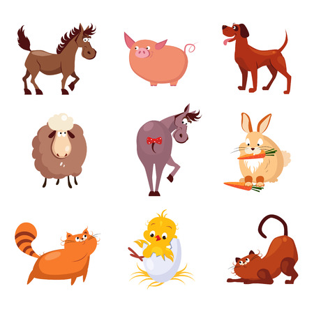 Domestic birds and animals flat style vector collection