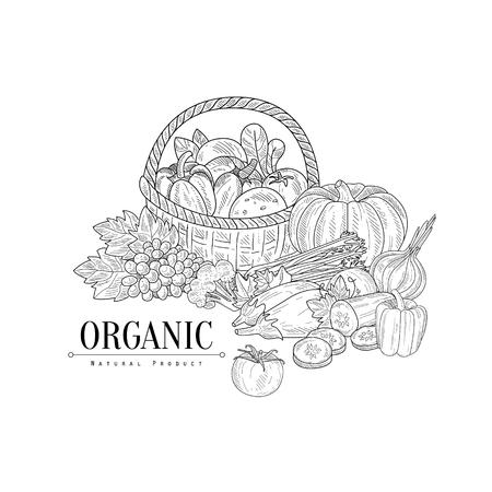 Illustration pour Organic Farm Products Still Life Hand Drawn Realistic Sketch. Hand Drawn Detailed Contour Illustration On White Background. - image libre de droit