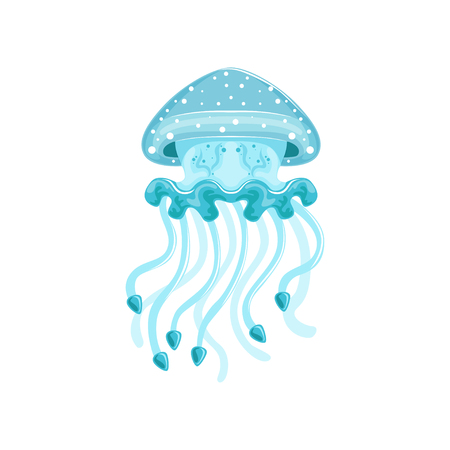 Illustration pour Light blue jellyfish, phyllorhiza punctata species of underwater life   vector Illustration on a white background - image libre de droit