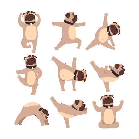Foto de Funny bulldog in different poses of yoga. Healthy lifestyle. Dog doing physical exercises. Cartoon domestic animal character. Colorful flat vector design - Imagen libre de derechos