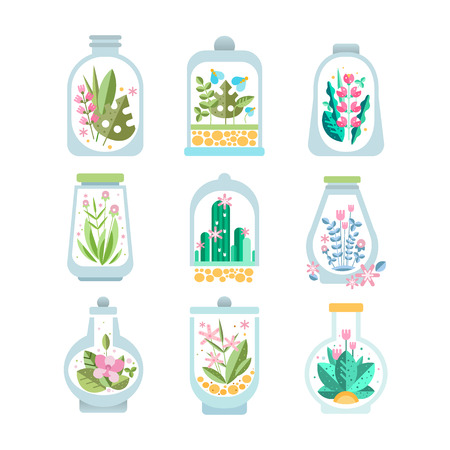 Flat vector set of glass vessel with blooming plant inside. Floral compositions in transparent bottles. Flowers and cactuses. Botanical theme
