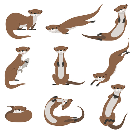 Illustration pour Cute otter set, funny animal character in various poses vector Illustration isolated on a white background. - image libre de droit