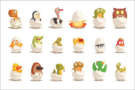 Illustration for Chicks and reptiles hatch from eggs set, unborn animals vector Illustrations isolated on white background - Royalty Free Image