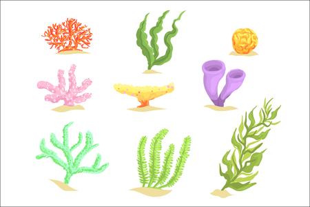 Illustration pour Set of cartoon underwater plants, seaweeds and aquatic marine algae vector Illustrations isolated on white background - image libre de droit