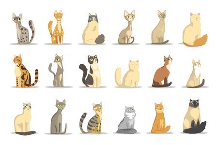 Illustration pour Cat different breeds set, cute pet animal vector Illustrations on a white background - image libre de droit