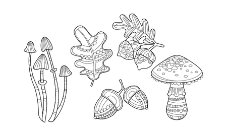 Illustration pour Collection of hand drawn plants, monochrome leaves, mushrooms, hazelnuts and acorns vector Illustration isolated on a white background. - image libre de droit