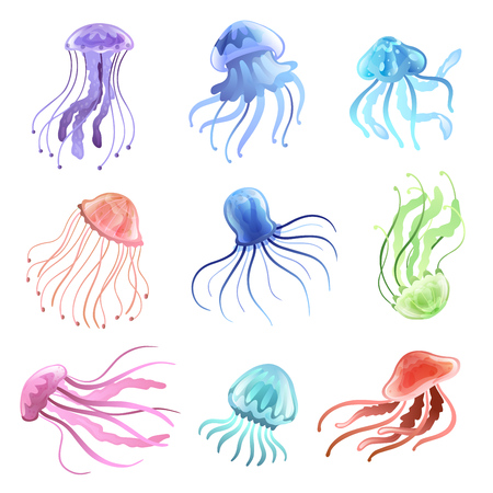 Illustration pour Jellyfish Set, Beautiful Colorful Swimming Marine Underwater Creatures Vector Illustration on White Background. - image libre de droit
