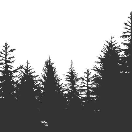 Illustration pour Vintage Pine Forest hand-drawn Background. Vector Illustration - image libre de droit