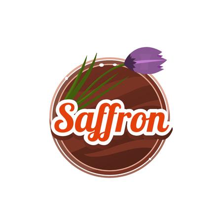 Illustration pour Saffron Spice. Vector Illustration. - image libre de droit