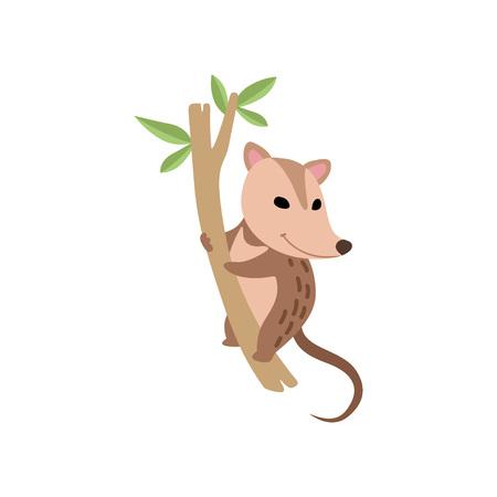 Illustration pour Cute Opossum Wild Animal on Tree Branch Vector Illustration on White Background. - image libre de droit