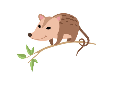 Illustration pour Cute Opossum Sitting on Tree Branch, Adorable Wild Animal Vector Illustration on White Background. - image libre de droit