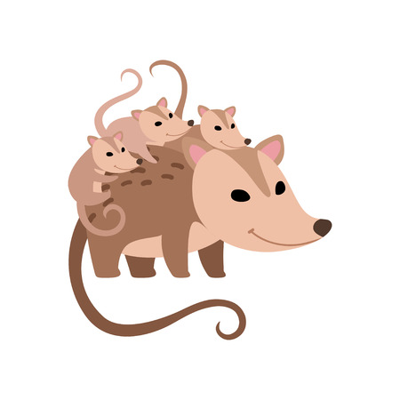 Illustration pour Mother Opossum with Its Babies, Family of Opossums Vector Illustration on White Background. - image libre de droit