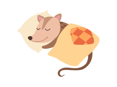 Illustration pour Cute Opossum Sleeping in Bed, Adorable Wild Animal Cartoon Character Vector Illustration on White Background. - image libre de droit