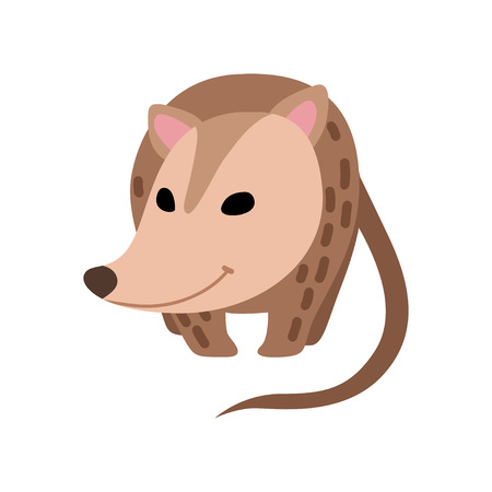 Illustration pour Cute Opossum, Adorable Wild Animal Front View Vector Illustration on White Background. - image libre de droit