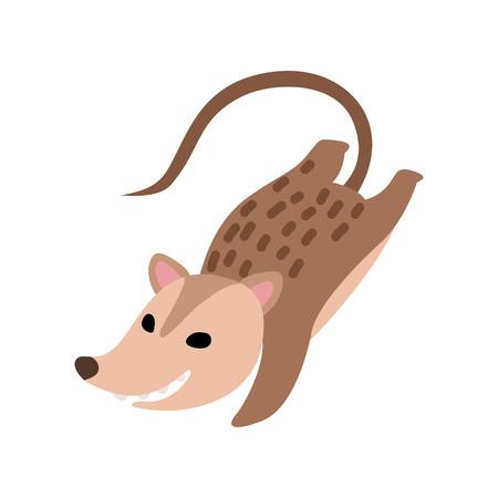 Illustration pour Cute Happy Opossum, Adorable Wild Animal Jumping Vector Illustration on White Background. - image libre de droit