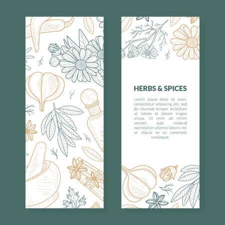 Photo pour Herbs and Spices Card Template with Natural Organic Healthy Products Seamless Pattern, Label, Flyer, Certificate, Hand Drawn Vector Illustration - image libre de droit