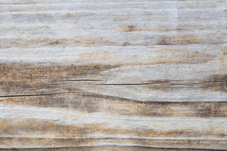 White natural wood texture and seamless backgroundの写真素材